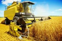 잔인한 5월, 농기계 사고율 증가