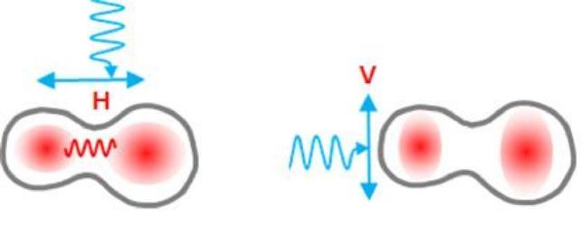 빛으로 양자점 사이 결합 제어하는 기술 개발돼