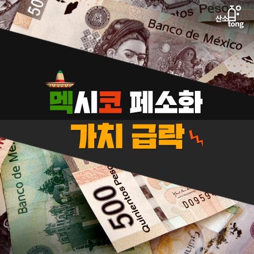 [카드뉴스] 멕시코 페소화 가치 급락