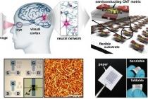 인간처럼 학습하고 판단하는 '뇌'를 닮은 전자회...