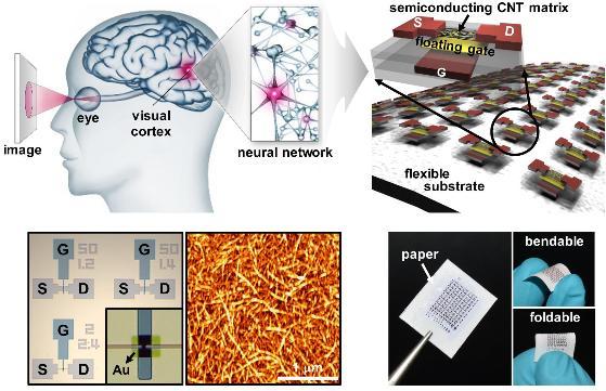 [Technical News]인간처럼 학습하고 판단하는'뇌'를 닮은 전자회로 개발 - 다아라매거진 기술뉴스