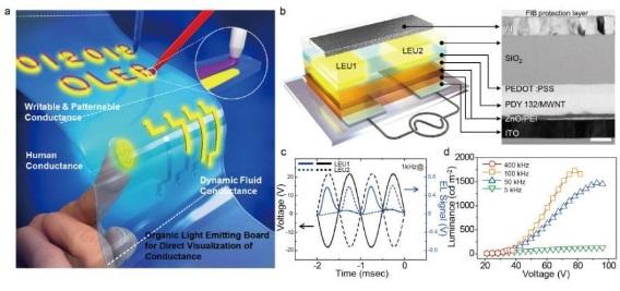인체정보 담아내는 센싱 디스플레이, '더 얇게' 만드는 원천기술 개발