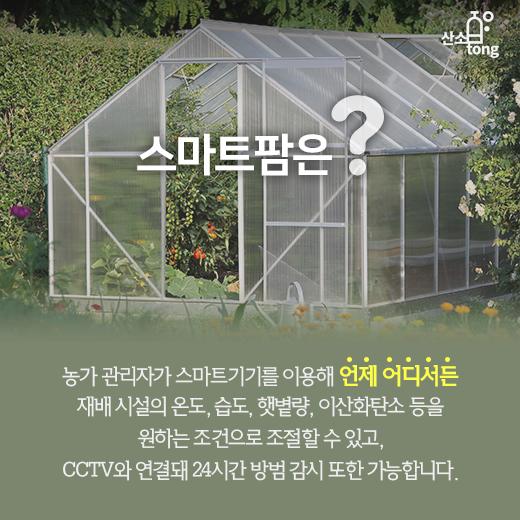 [카드뉴스] 손가락으로 가꾸는 농장, 스마트팜