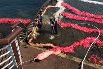 기름 흡착 '오일 스네어', 해양오염 방제자재 품목에 포함