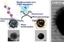 세포 속에서 빛이 나오는 산화철 광열제 개발