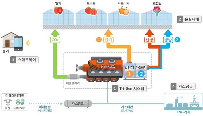 스마트 온실, 삼중발전 시스템으로 효율성 높인다