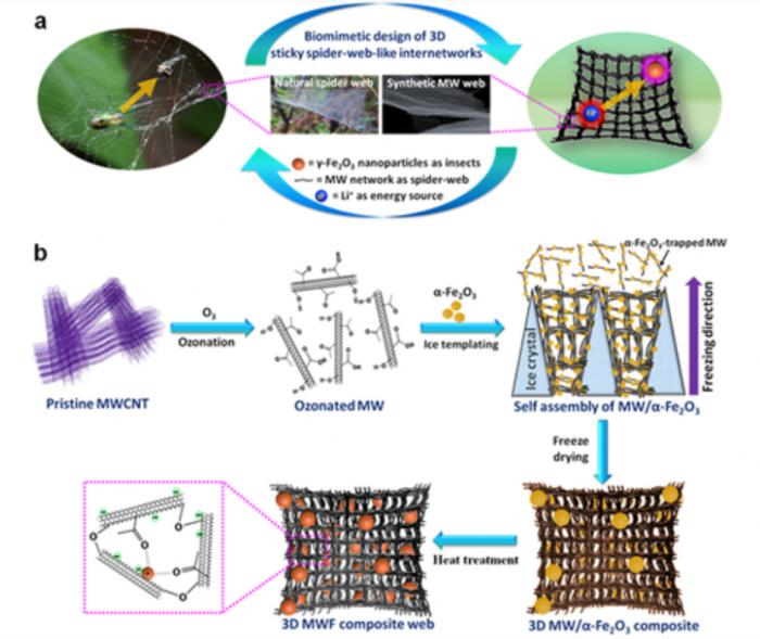 거미줄 모방 리튬이온전지 전극 소재 개발…다양한 기능성 소재에 적용 가능