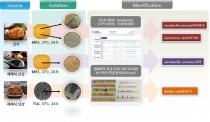 국내 연구팀, 프로바이오틱스 발굴 및 소재화 기술개발