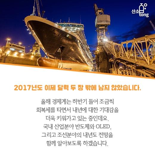 [카드뉴스] 2018년 경제, 반도체·OLED는 '엄지척', 조선은 '글쎄'