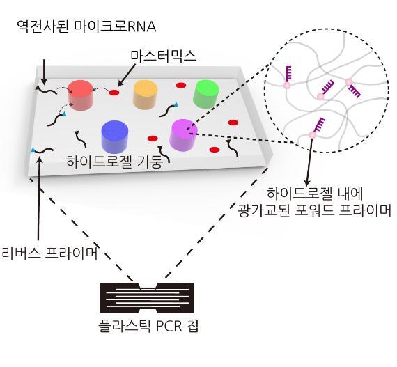 [Technical News]하이드로젤 기반 다중유전자로 조기에 치매 예방한다 - 다아라매거진 기술뉴스