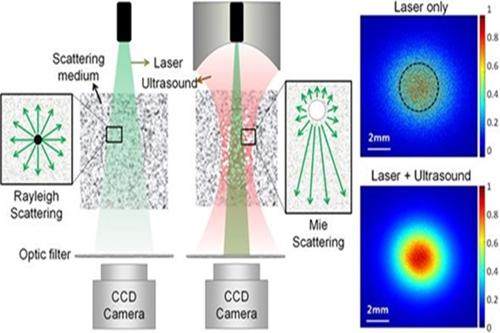 [Technical News]초음파를 이용한 빛의 생체조직 침투 깊이 증가 - 다아라매거진 기술뉴스