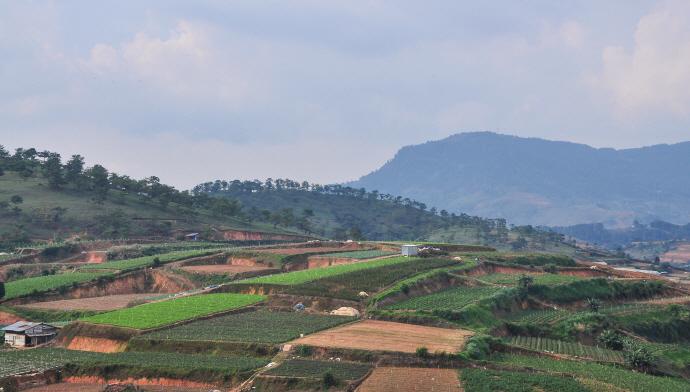농업진흥지역 일부 규제 푼다