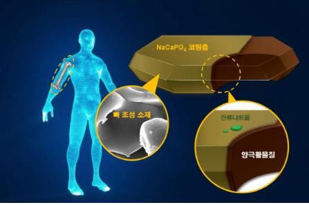 [Technical News]뼈 소재 모방한 이차전지용 양극소재 개발 - 다아라매거진 기술뉴스