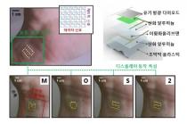 초박막 유연 디스플레이, 2차원 반도체로 개발 ...