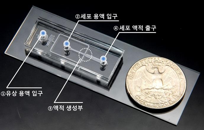 [Technical News]미세유체 바이오칩 기반으로 새로운 항암제 개발 나선다 - 다아라매거진 기술뉴스