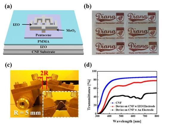 [Technical News]유연하고 투명한 생분해성 유기 광트랜지스터 - 다아라매거진 기술뉴스