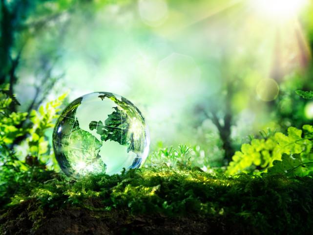 """[쓰레기 대란-최종] '빛과 소금'이 된 산업폐기물, """"지구를 지켜라"""""""