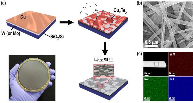 [Technical News]금속 액체방울로 새로운 나노물질 개발 - 다아라매거진 기술뉴스