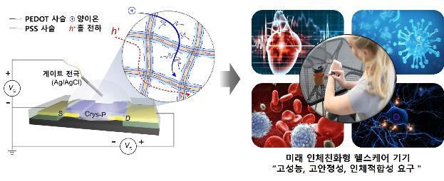 [기술뉴스] 전자소자, 인체 이식 가능해졌다 - 다아라매거진 기술뉴스