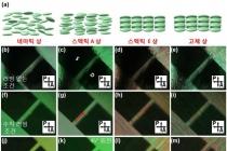 유기 반도체 기반 트랜지스터, 액정 물질 특성 ...