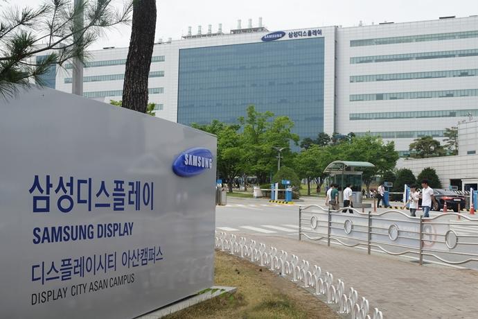 삼성디스플레이, LG디스플레이 독주 대형 디스플레이 시장 '도전'