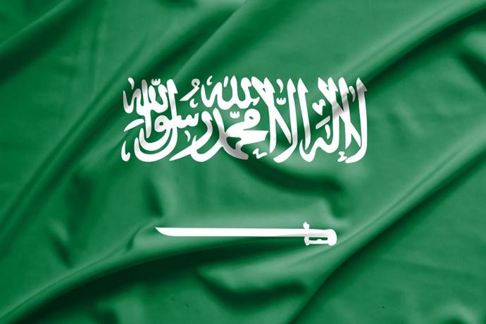 사우디, 이제는 석유 아닌 '신재생 에너지' 향해 달린다