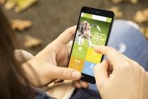 반려동물 돌보기, ICT 기술 발전으로 더욱 스마트하게