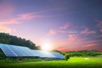 국내 신재생에너지 성장, 세부 에너지원별 성장 차별화 지속