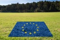 EU 신정부, 기후변화 대응 최우선 과제로 꼽아…CO₂배출 감소방안 모색해야