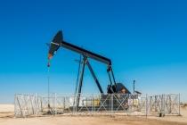 OPEC+, 결국 원유 생산량 감축 나선다