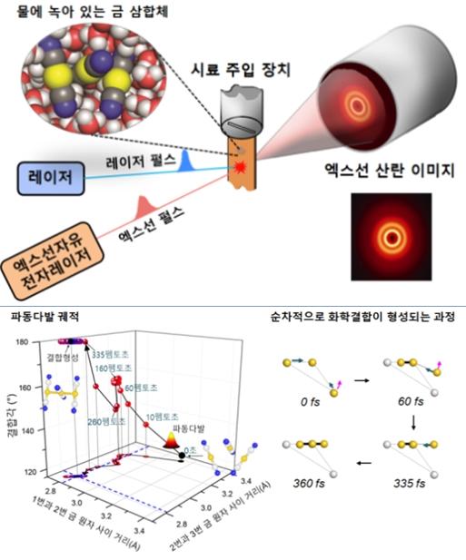분자 탄생 모든 순간(35펨토 초) 포착 성공 - 산업종합저널 기술이슈