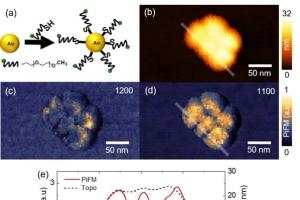 독자 개발한 초분광 광유도력 현미경, 나노입자 표면 화학적 이미지 관찰 성공
