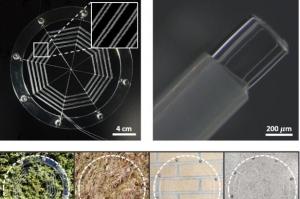 거미줄 이용한 먹이잡기 모사한 거미줄 로봇 개발 성공