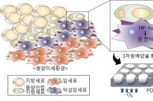 암세포, 지방세포 내 지방산 타고 움직인다