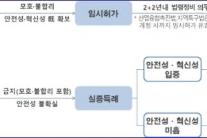 선택과 집중 통한 특례 승인율 제고, 특례 기업 조기 사업화 지원