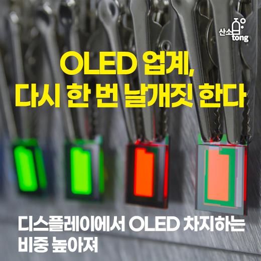 [카드뉴스] OLED 업계, 다시 한 번 날개짓 한다