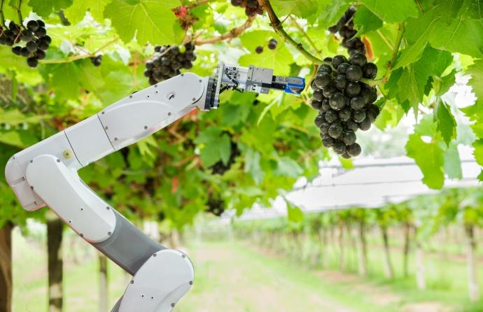'스마트 팜 with 로봇' 우리나라 농업 혁신 앞당길까 - 산업종합저널 로봇