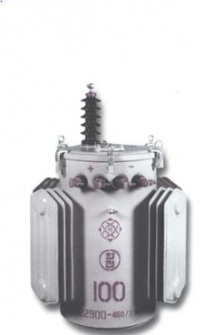 일단접지변압기(Single Bushing Transformer)